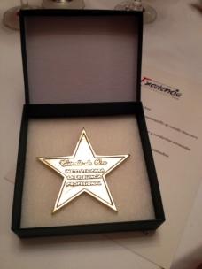 estrella_oro_excelencia_profesional